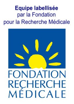 fondation FRM